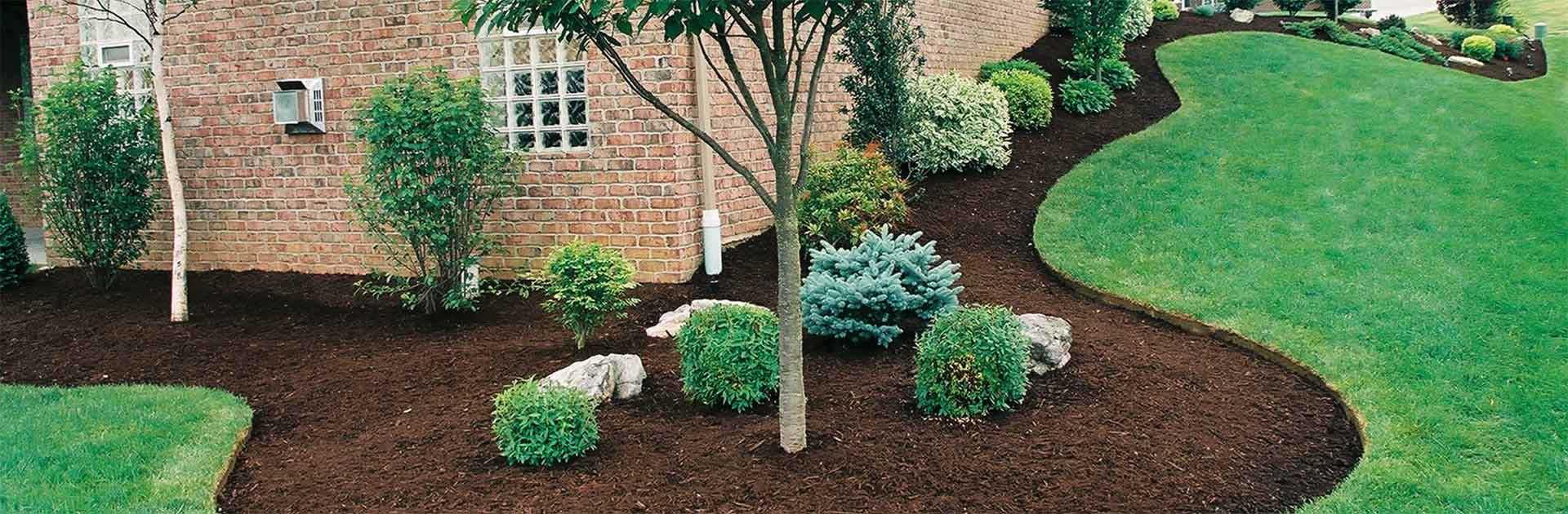 Vegetation Planning